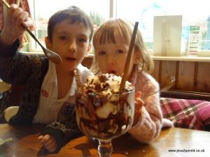 Large chocolate icecream sundae
