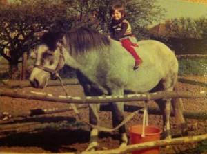 dapple gray pony