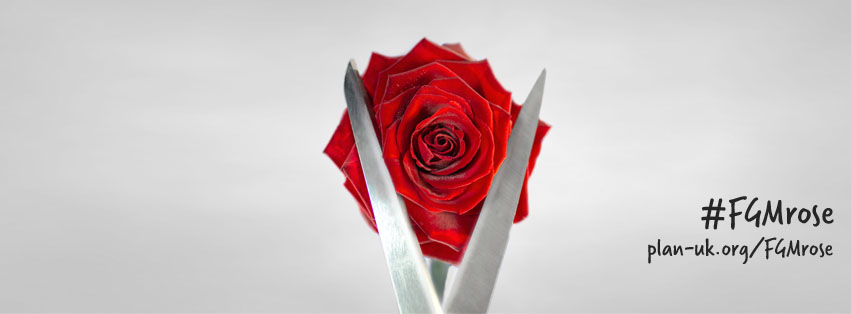 fgmrose-Female Genital Mutilation Rose