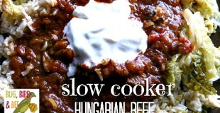 Slow Cooker Hungarian Beef Stew