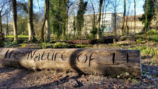 A Day Of River Avon Walks In Chippenham