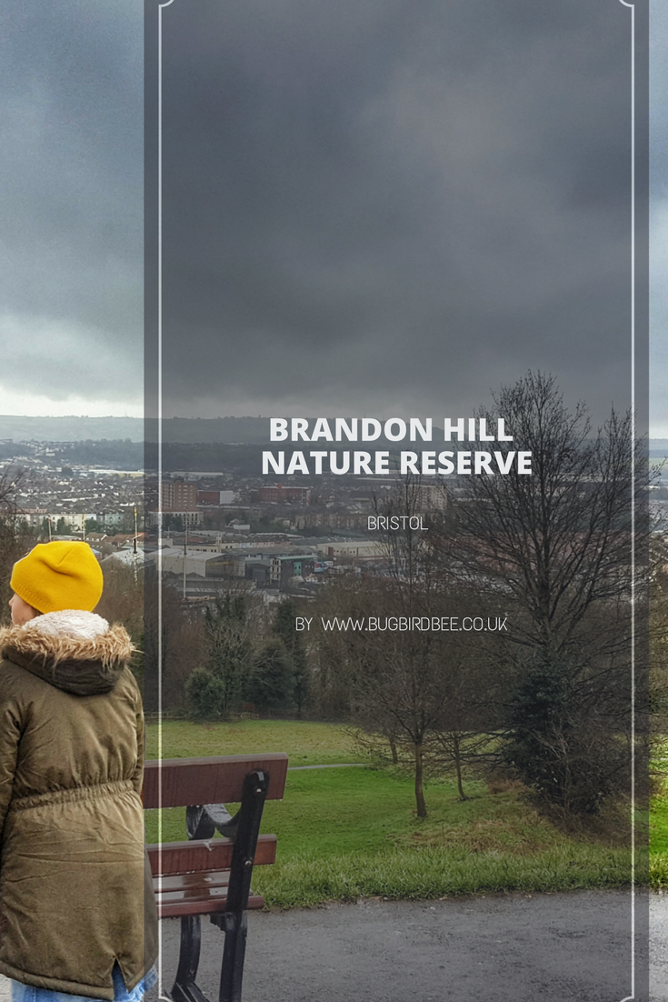view over Brandon Hill, Bristol with a text overlay Brandon Hill nature reserve Bristol by www.bugbirdbee.co.uk