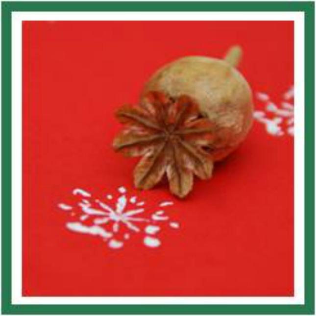 Poppy Snow Flake Stamp Kids Craft Supplies List